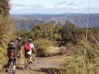 Tongario Mountain Bike Hire