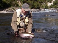 Tongario River Fly Fishing Trout