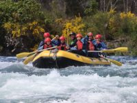 Whitewater rafting for the family